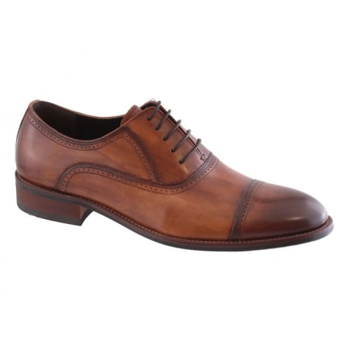 Morgan & Co Men's Brown Formal Dress Toe Cap Tie Shoe